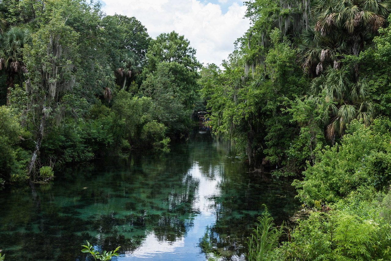 Silver Springs Canal