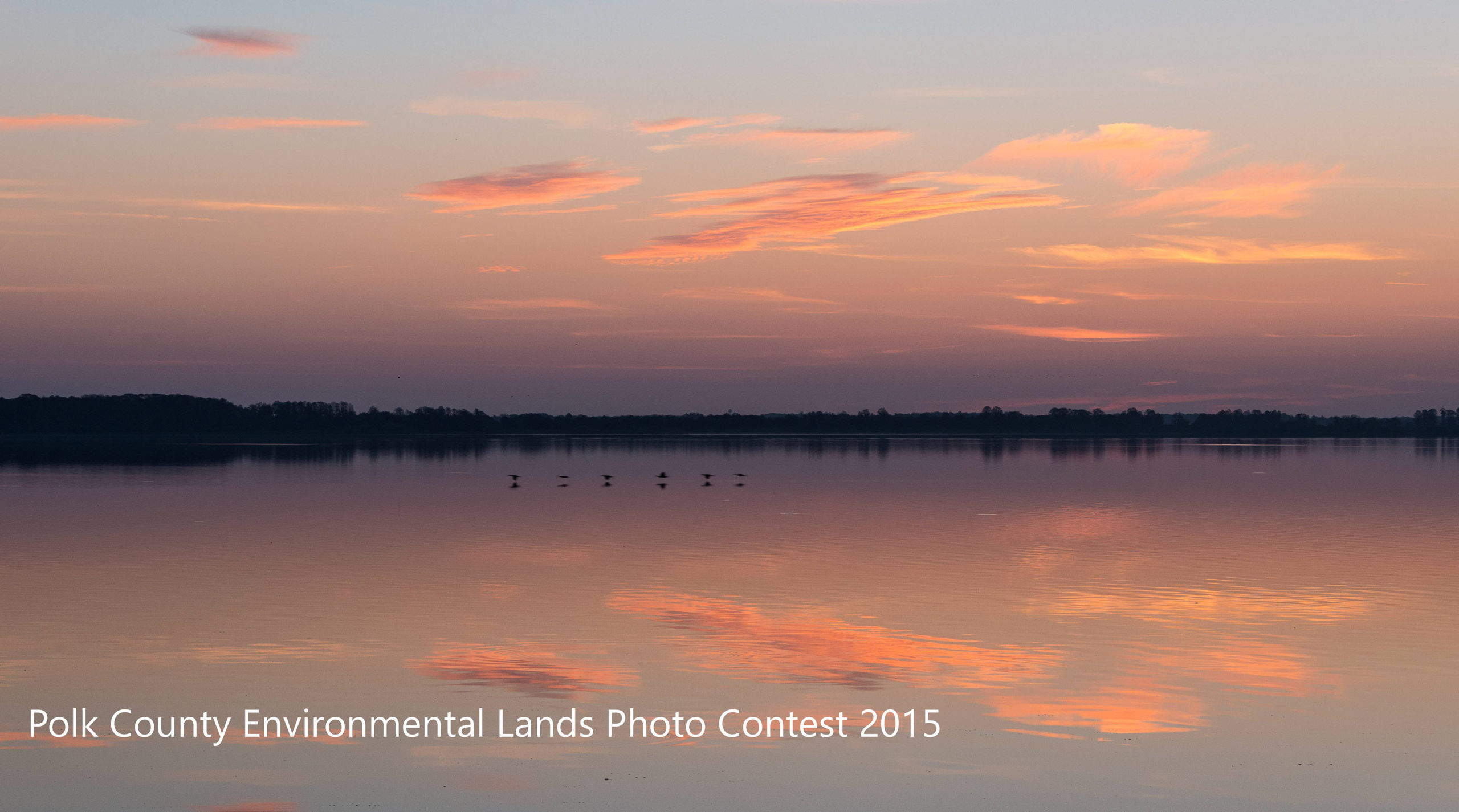 """Featured image for """"Polk County Environmental Lands Photo Contest 2015"""""""